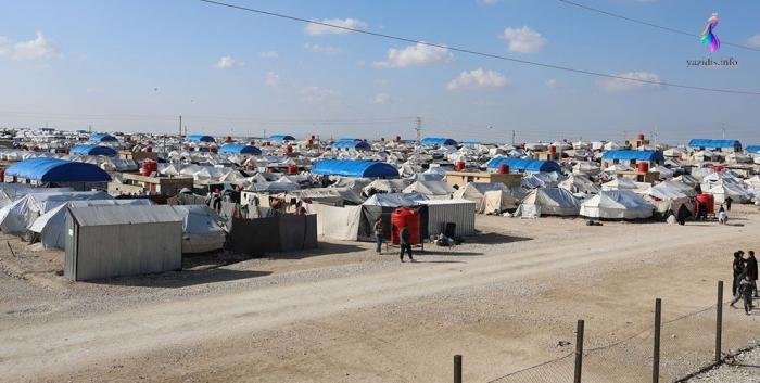 Иммиграционная служба Ирака объявляет о включении езидских беженцев и переселенцев в программу вакцинации