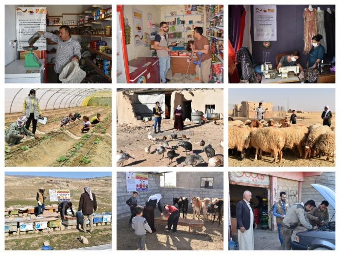 Yazda в партнерстве с ASB реализовала важный проект по обеспечению средств к существованию в Синджаре